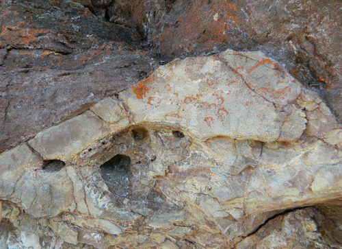 Photo 2012-163 : Karstic features below the Proterozoic Cambrian unconformity. C. Dissolutional scalloping on paleo-horizontal surface within a paleocavern (arrows).