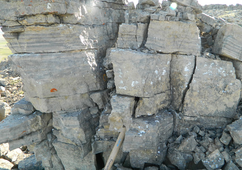 Photo 2012-169 : Pale grey dolostone with laminations and partings, Wynniatt Formation