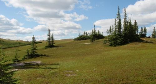 Photo 2013-001 : Vegetated glaciofluvial outwash complex, Whitefish Lake