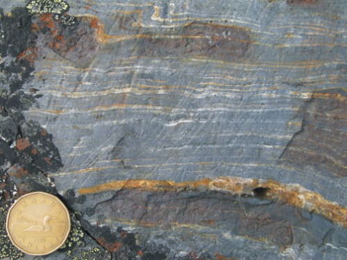 Photo 2013-268 : magnetite-rich banded iron-formation from the northern extent of the belt, NW of Hall Lake