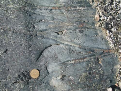 Photo 2013-273 : slightly flattened pillow structures in basalt, southwest Roche Bay belt near location of Figure 5b