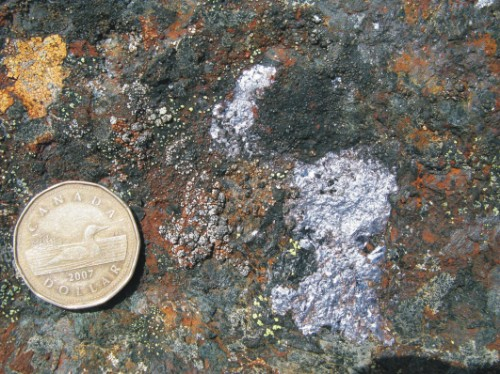 Photo 2013-277 : molybdenite (silver colour) on fracture surface in orthopyroxenite. Rest of outcrop surface is covered in lichen. Coin is 2.5 cm diameter