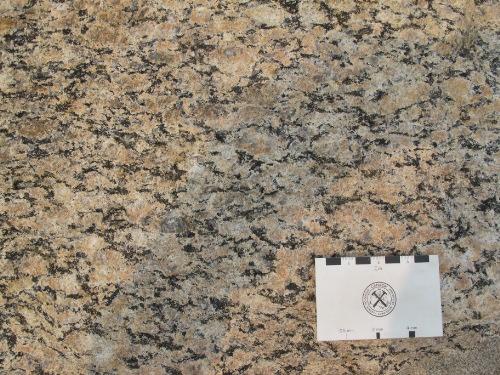 Photo 2014-222 : Foliated K-feldspar megacrystic monzogranite, Meta Incognita Peninsula, Baffin Island, Nunavut