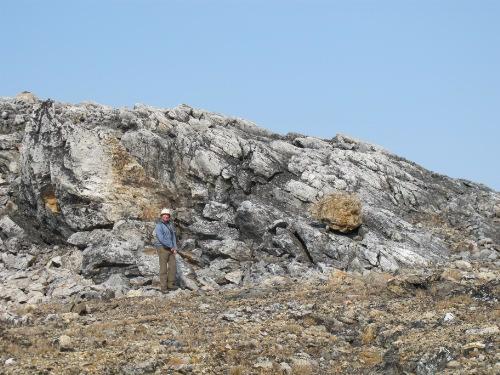 Photo 2014-224 : Garnet-sillimanite-biotite-melt psammite, Lake Harbour Group, Meta Incognita Peninsula, Baffin Island, Nunavut