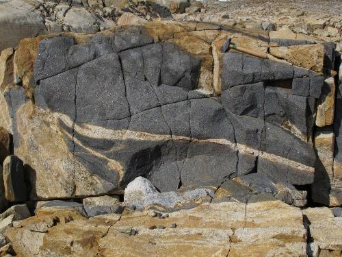 Photo 2014-227 : Orthopyroxene-biotite monzogranite-diorite gneiss (unit Pmdg) east of York Sound, Meta Incognita Peninsula, Baffin Island, Nunavut. Monzogranite host  ...