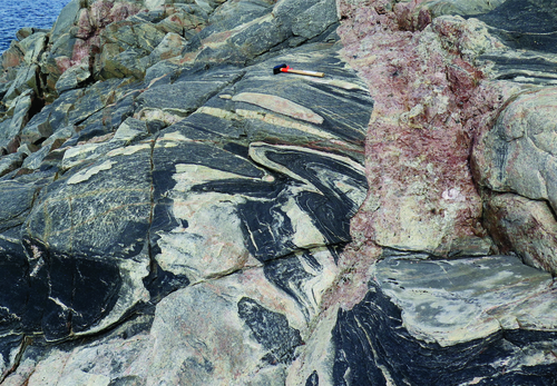 Photo 2017-102 : Gneiss comprising biotitehornblende quartz diorite and biotitemagnetitehornblende monzogranite with gabbro enclaves. The gneiss is cross-cut by a  ...